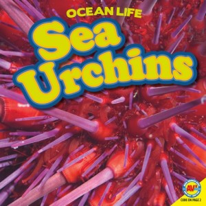 OceanLife-Sea Urchins