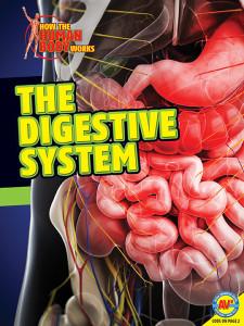 HTHBW-Digestive-System