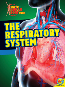HTHBW-Respiratory-System