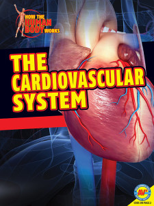 HTHBW-Cardiovascular-System